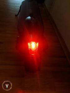 Segway Ninebot MAX G30D Lichtkegel